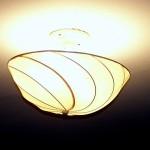 Pottery Barn Silk Bulb Cover